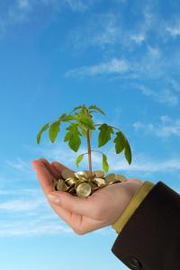 บัญชี,ภาษี,งบการเงิน,สร้างและรักษาลูกค้า,การแข่งขัน,กลยุทธ์