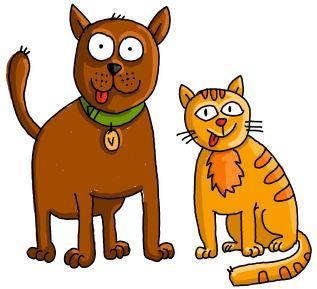 การปฐมพยาบาลเบื้องต้น เมื่อสุนัข และแมวอาเจียน (เริ่มเป็นใหม่ๆในวันแรก) by Healthy Pets Club
