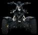 BLACK HAWK 250cc