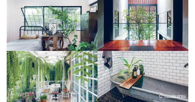 ไอเดียเปิดช่องแสง สร้างพื้นที่สีเขียวในบ้าน