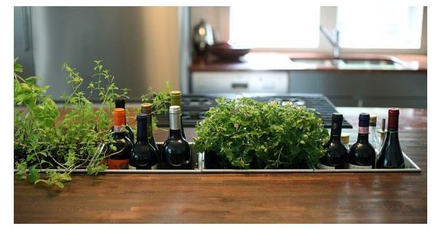 10 ไอเดียครีเอทีฟ ปลูกผักสวนครัว ในบ้านสุดเก๋