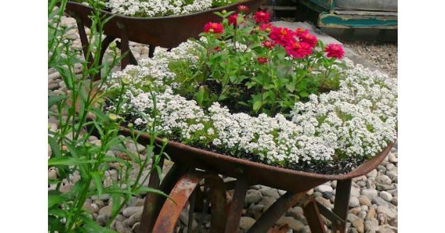 10 ไอเดียสวนสดใสในสไตล์ Shabby Chic Garden